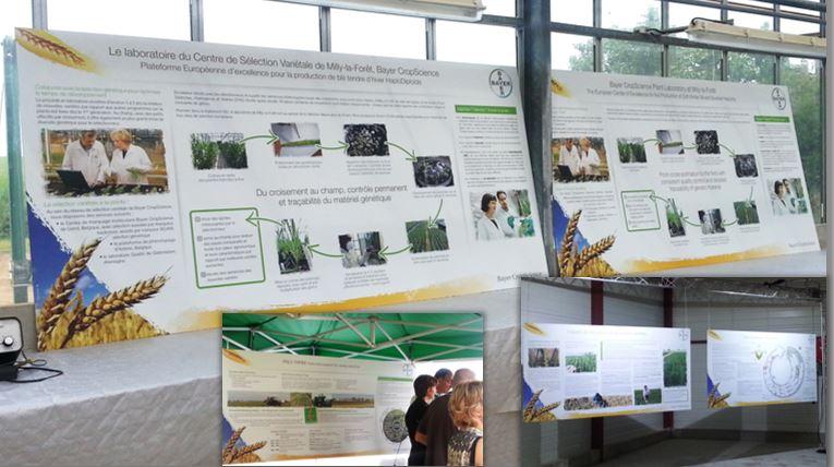DE BOUCHE A OREILLE • Création originale de panneaux d'exposition pour l'inauguration d'un Centre de Sélection variétale pour BAYER SEEDS.