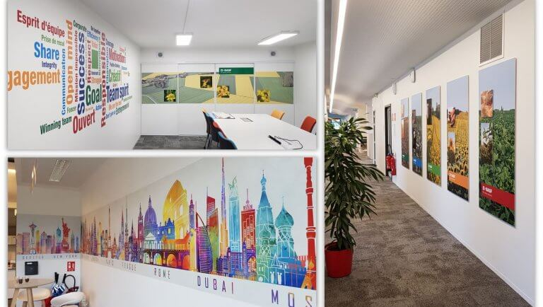 DE BOUCHE A OREILLE • Décoration d'un plateau de bureaux pour BASF - Création graphique originale, fabrication et installation sur site.