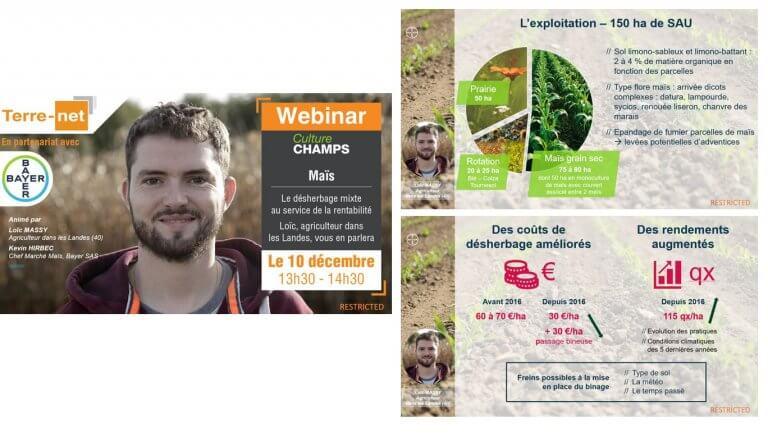 DE BOUCHE A OREILLE • Production d'un support de présentation pour animer un webinaire sur le désherbage mixte du maïs pour BAYER.
